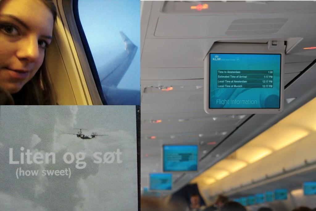 Flugbeschäftigungen