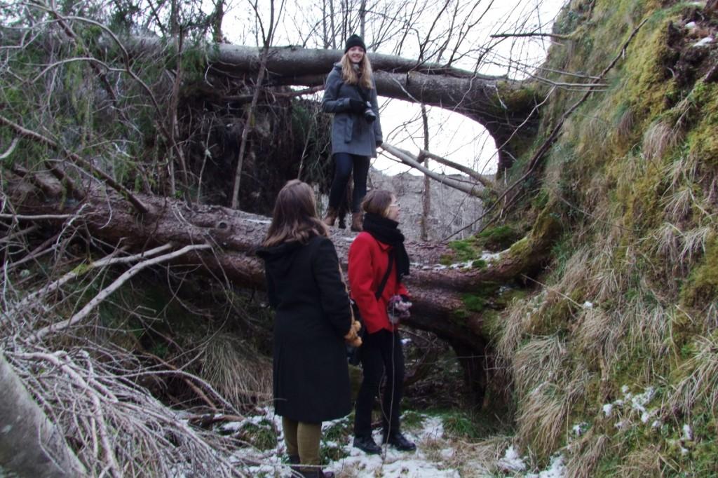 Ich auf umgestürztem Baum